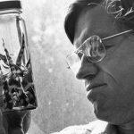 David Wake, Expert on Salamanders and Evolution, Dies at 84
