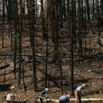 Wildfires Threaten Urban Water Supplies, Long After the Flames Are Out