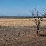 La sequía amenaza las tierras más fértiles de EE. UU.